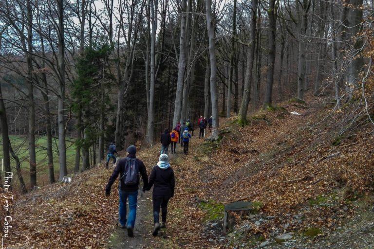 Balade dans les bois de Sart